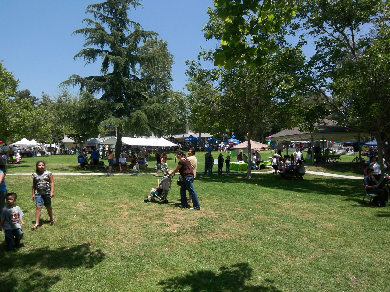 Avocado Festival La Habra Heights